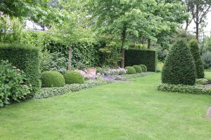 De taxus een aanwinst voor je tuin - Creeren van een tuin allee ...